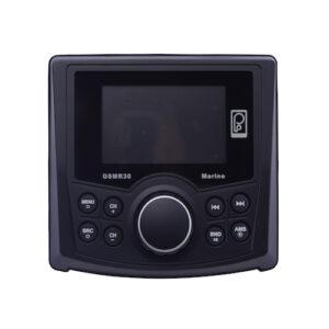 GSMR30 marine stereo